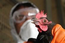 اسوأ فيروسات قاتلة على وجه الارض