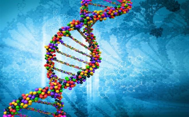 عوامل جينية وبيئيّة
