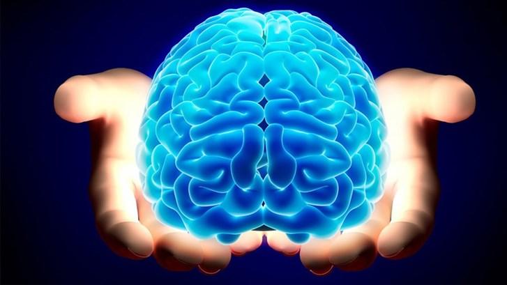 تضرّر خلايا الدّماغ