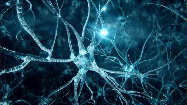 الأمراض العصبيّة