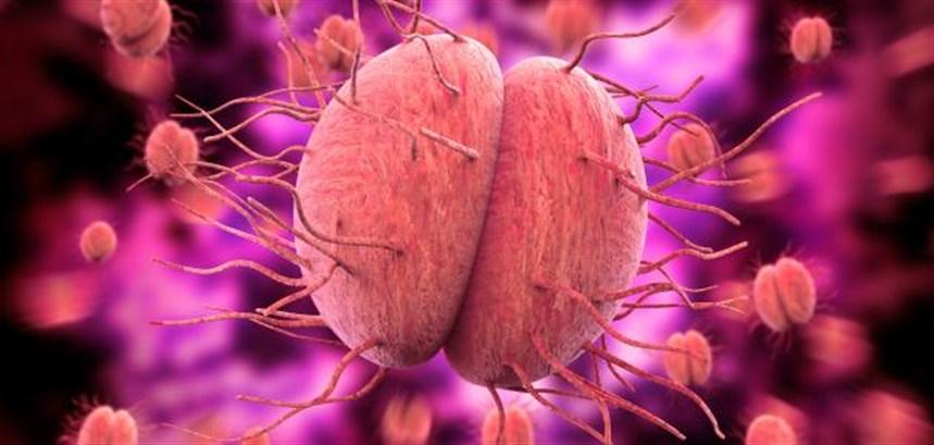 التعرّض للبكتيريا