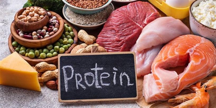 التركيز على البروتين