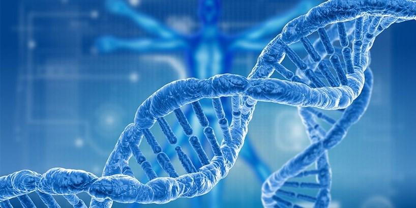 الوراثة