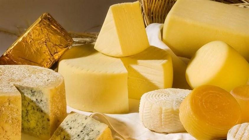 منتجات الألبان والأجبان
