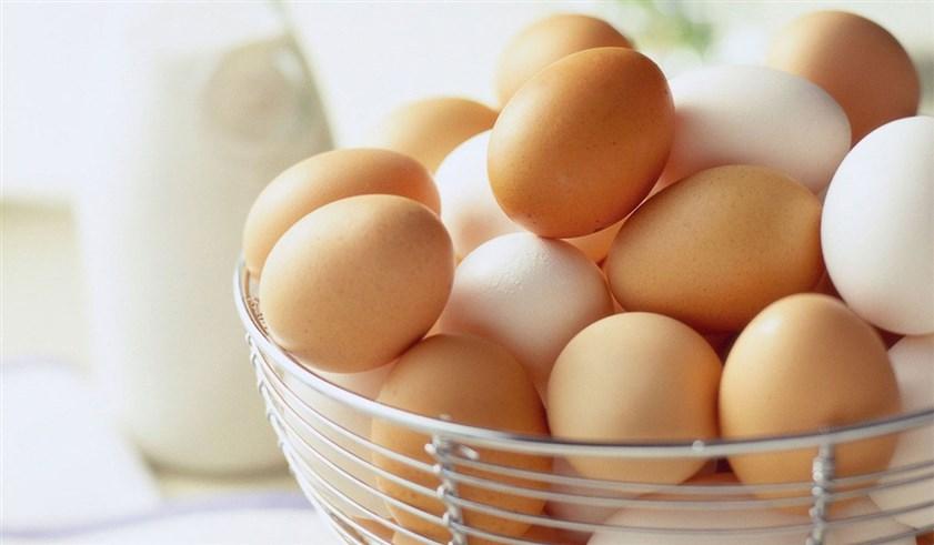 من اهم الاطعمة التي يجب ان يتناولها الطفل للحصول على عظام قوية وسليمة هو البيض الغني بالبروتين والفيتامينات الضرورية للجسم
