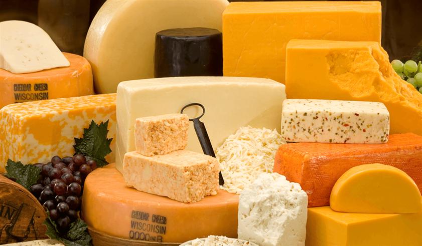 مُنتجات الألبان والأجبان