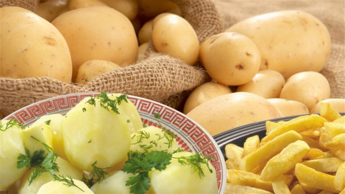 هل البطاطا تسمن