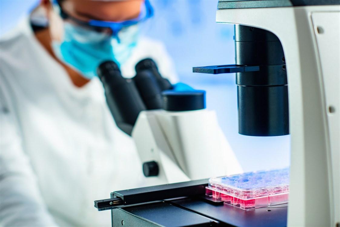 الفرق بين زراعة دم الحبل السري والنخاع العظمي