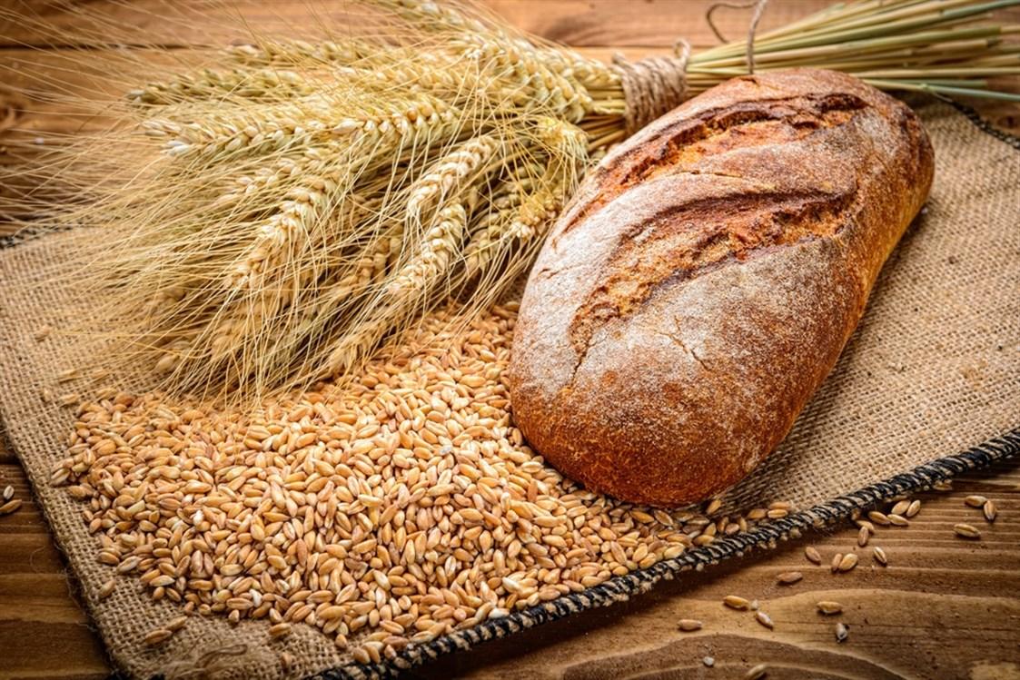 Sohati - هل خبز الحنطة يسمن